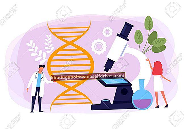 הגדרת חומר גנטי של DNA ו- RNA (שלם)