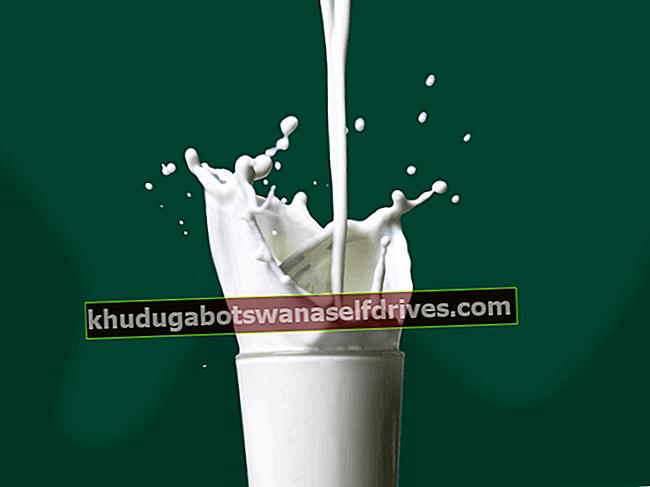 21+ יתרונות חלב דובים מלאים לבריאות גופך