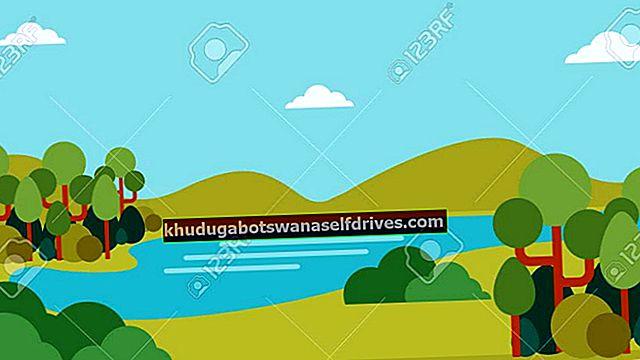 סוגי דפוסי זרימת נהר (שלמים) יחד עם תמונות והסברים