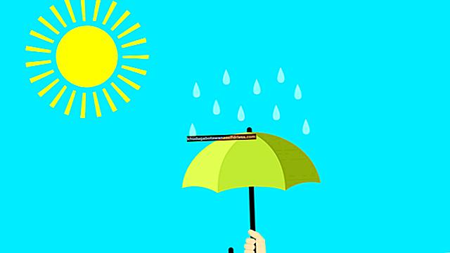 Proces dežja (+ slike in popolna razlaga)