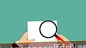 טקסט דוח תוצאות התצפית (הסבר ודוגמה)