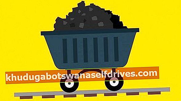 24+ יתרונות של פחם לכל החיים (FULL)