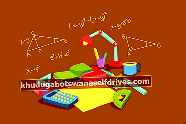 Komplette rektangelformler: Areal-, omkrets- og 4 eksempelproblemer