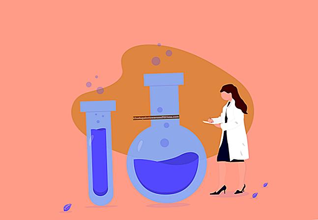8 מדעניות עליכם לעקוב