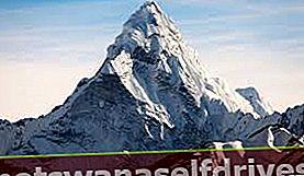 האם להר יש באמת שורשים?
