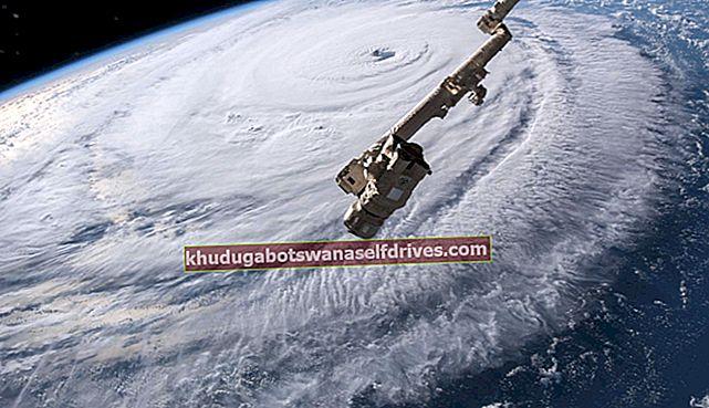 כך נראה הוריקן פירנצה מהחלל החיצון, הפוגע בחוף המזרחי של אמריקה