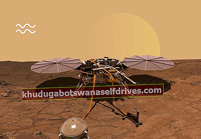 """רובוט ה- InSight של נאס""""א נחת בהצלחה בכוכב המאדים"""